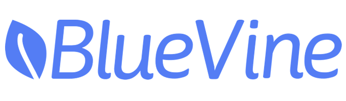 BlueVine Business Checking